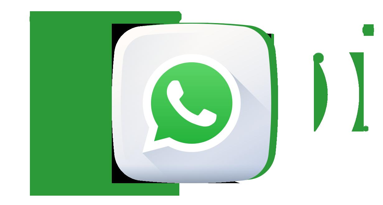 TELA SOLUÇÃO WhatsApp Business API Pluri Sistemas