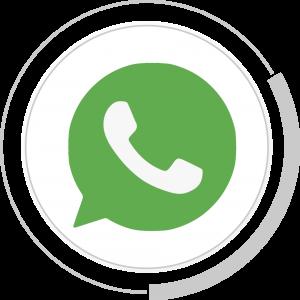 whatsapp pluri chat api oficial