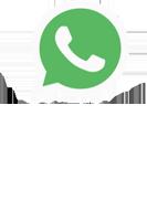 WhatsApp Business API - Pluri Sistemas