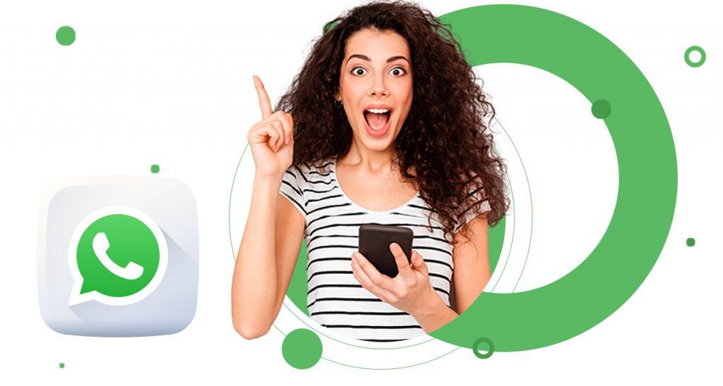 whatsapp business api para empresas pluri sistemas